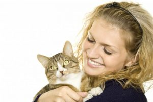 cat tips for new owners